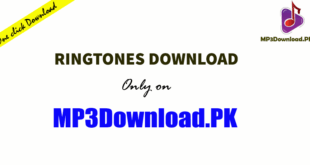 Ringtone Download in Audio MP3